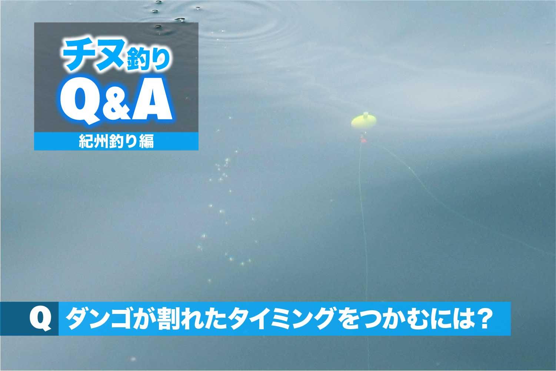 QA紀州釣りダンゴの割れ2