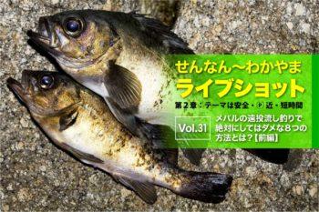 メバルの遠投流し釣りで絶対にしてはダメな8つの方法とは?【前編】|せんなん〜わかやまライブショット第2章Vol.31