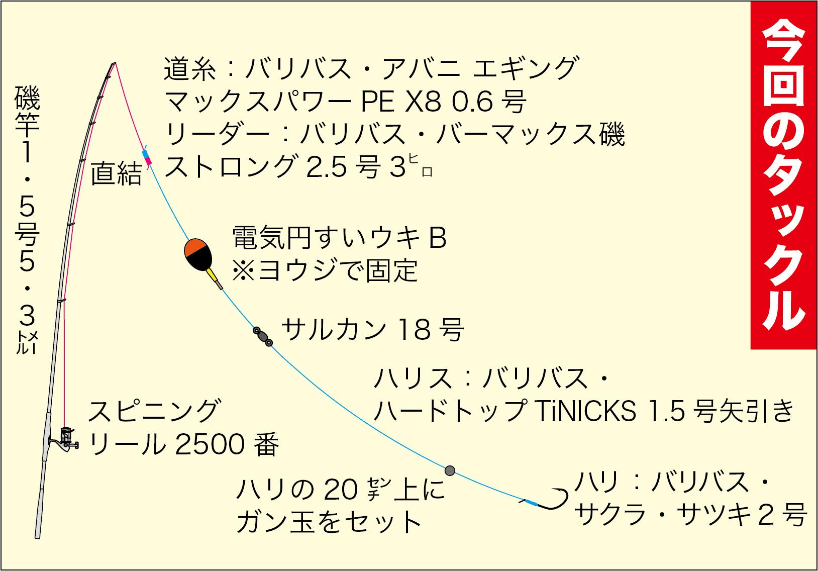ライブショット33-15