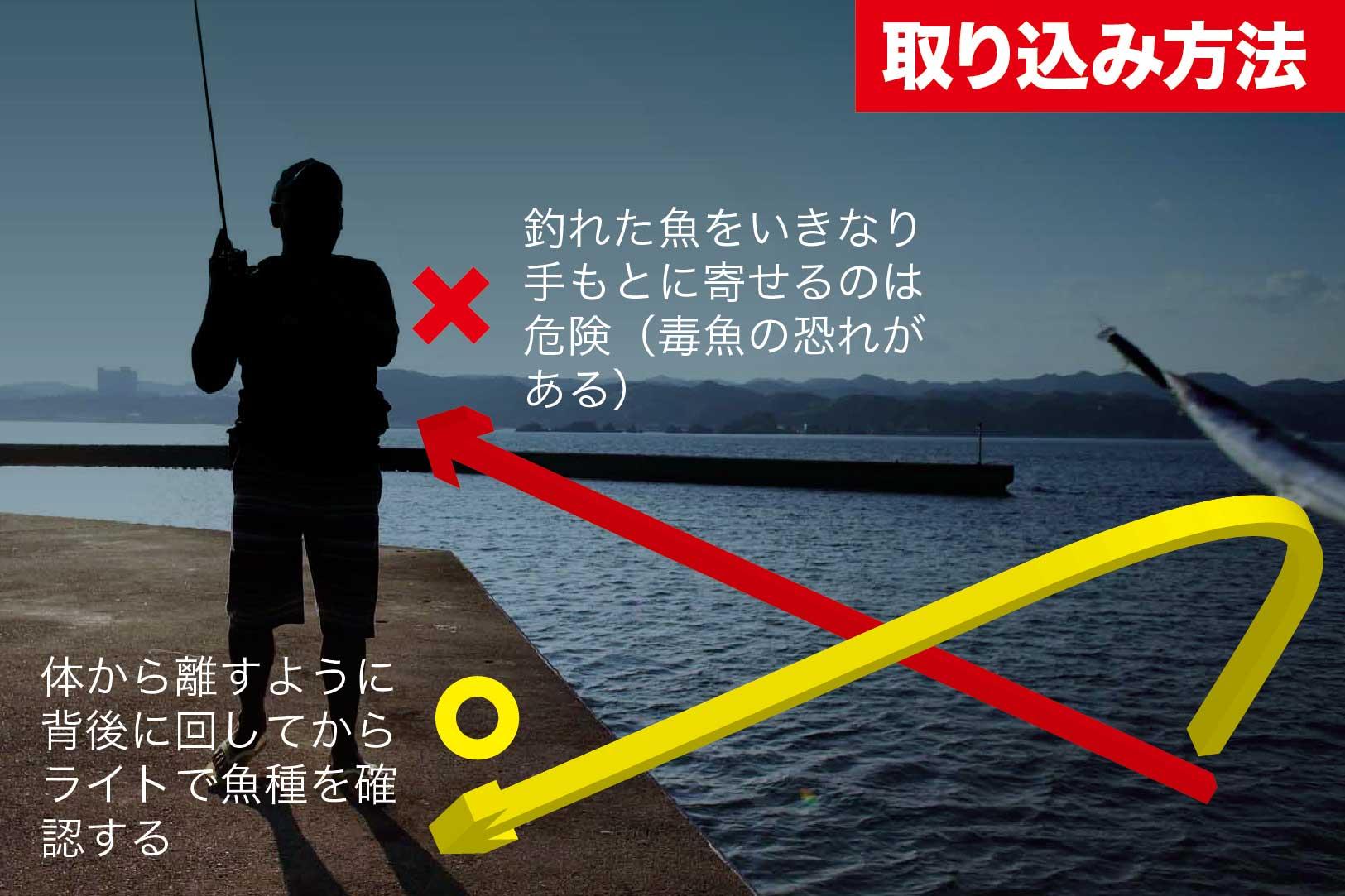 夜釣りの注意点10