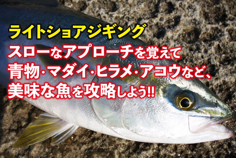 ライトショアジギング・釣り方1