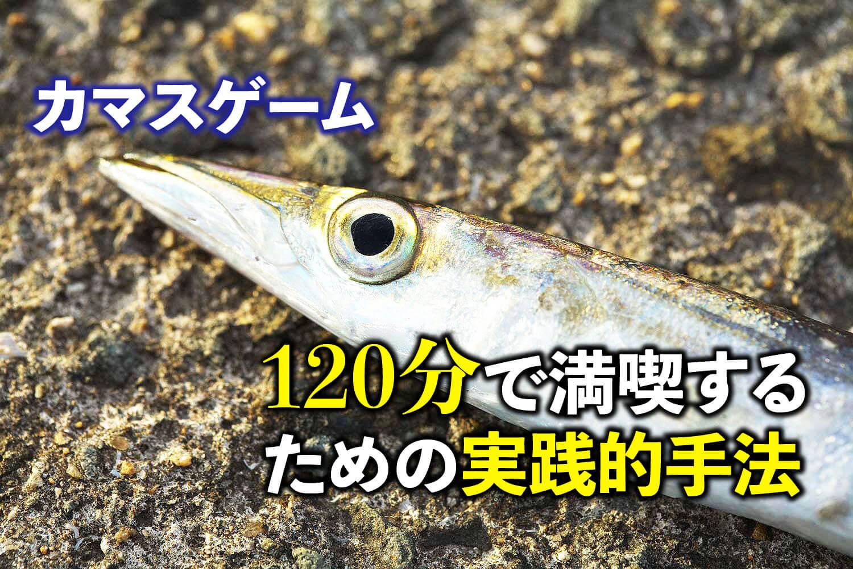 カマスの釣り方・スプーン・メタルジグ1