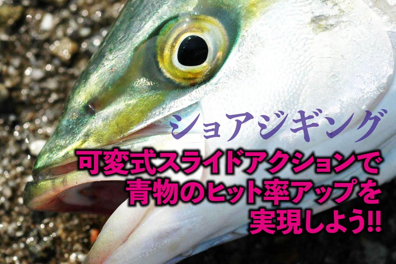 ショアジギング・ブリ・ハマチ1