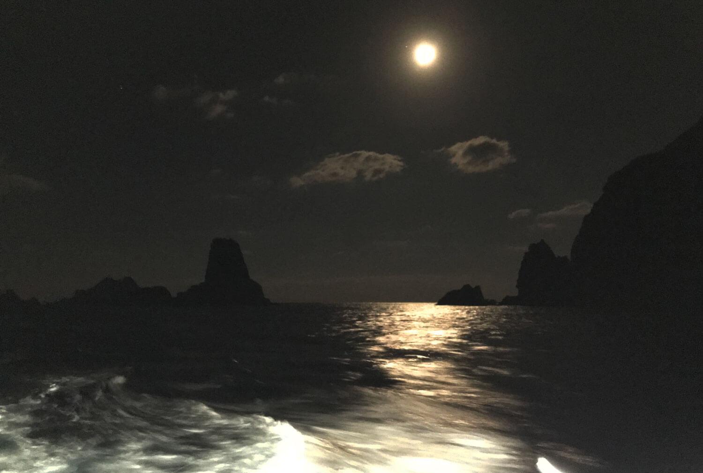 草垣群島 イソマグロ2
