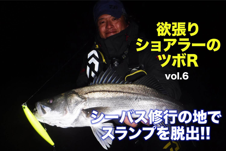 シーバス・ヒラスズキ サヨリパターン1