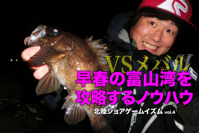 メバリング 富山湾1
