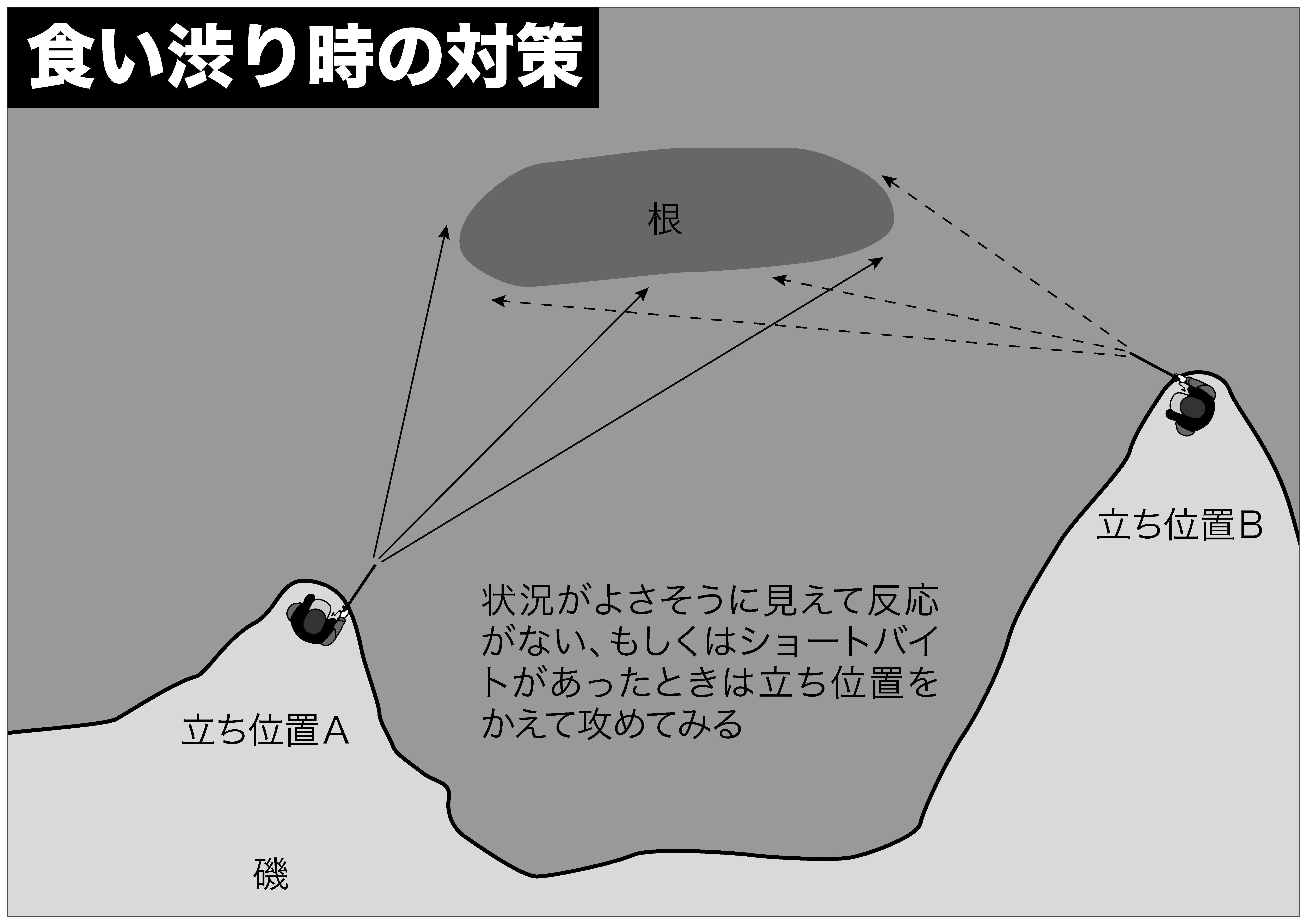 ヒラスズキ 釣り方15-2