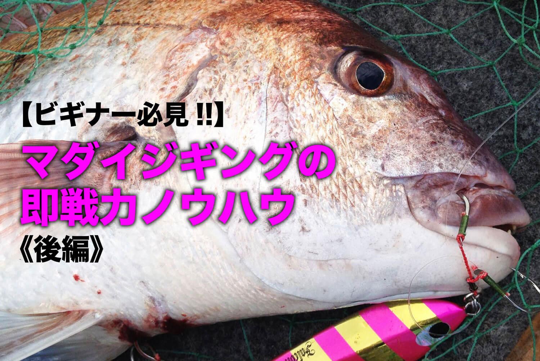 マダイジギング 釣り方3