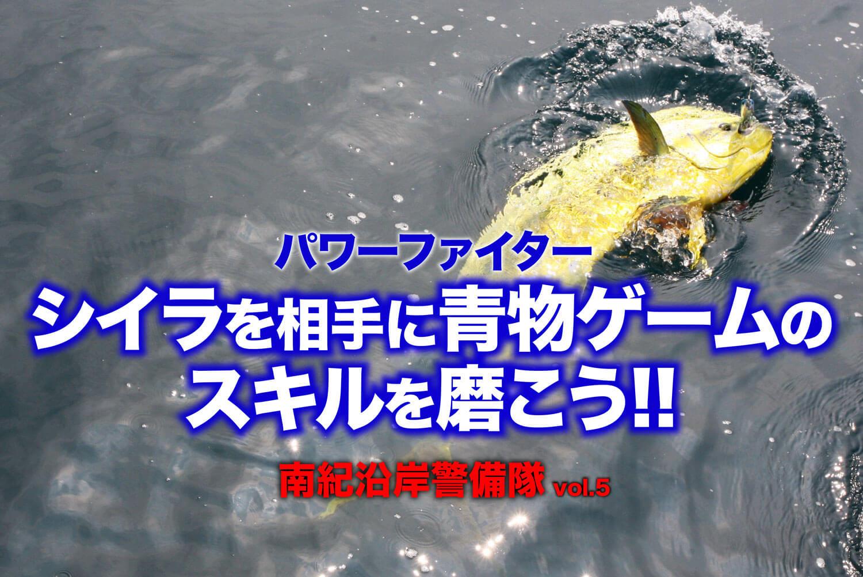 青物釣り入門 シイラ1