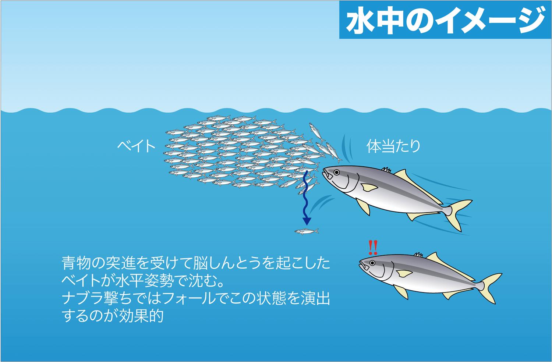 ショア青物ゲーム用ルアー ブリ・メジロ・サワラ・サゴシ6