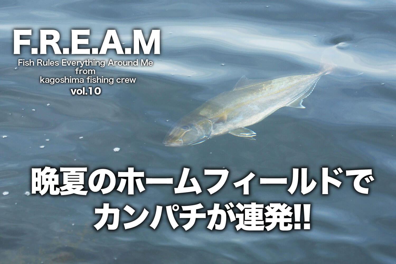 ショア青物ゲーム カンパチ1-1