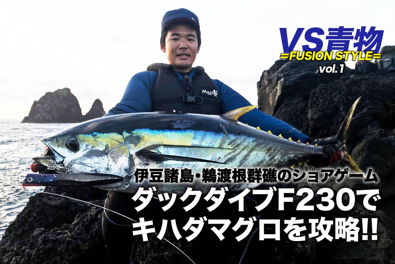 ショア青物ゲーム MariaダックダイブF230・ボアーSS195 1