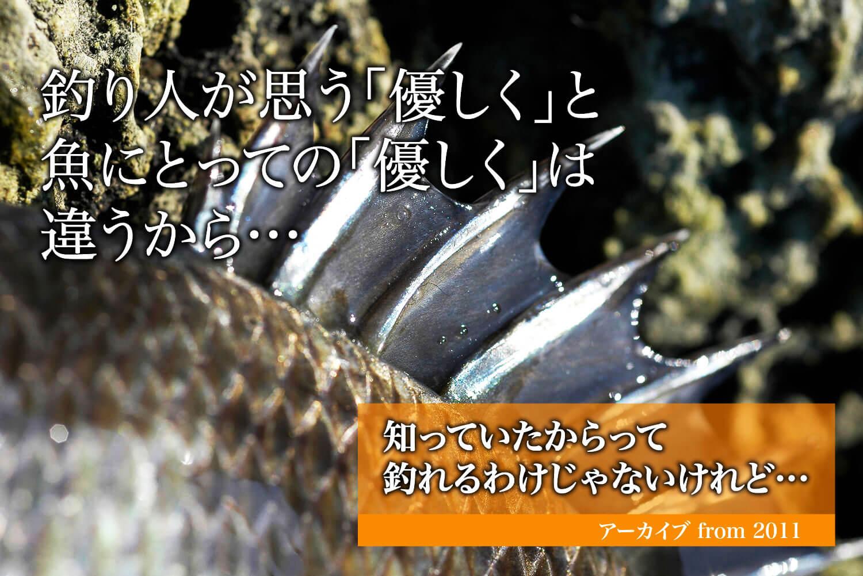 釣り・魚・リリース方法1