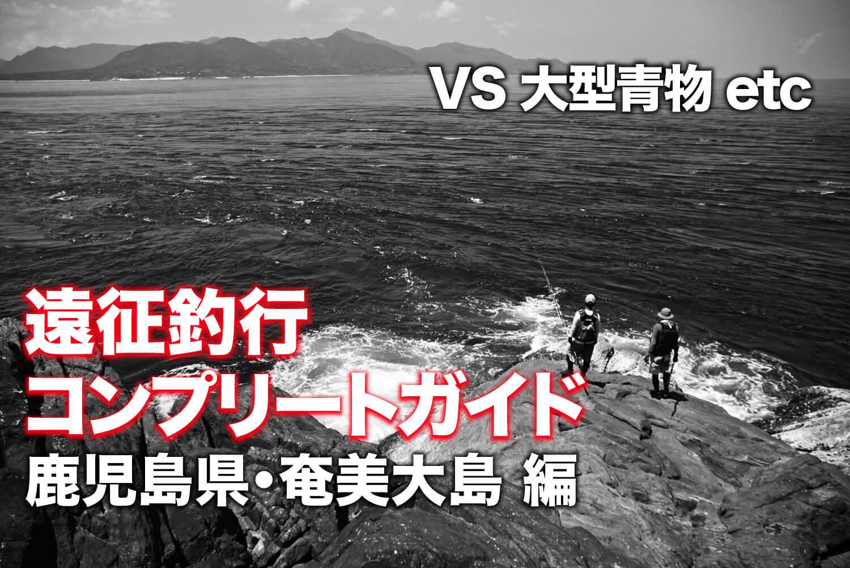ショア青物ゲーム・奄美大島1