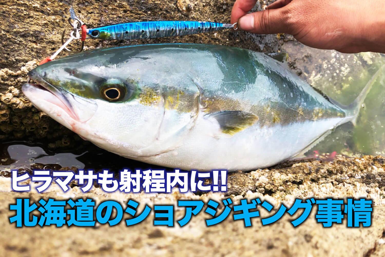 ショアジギング・北海道・ヒラマサ1