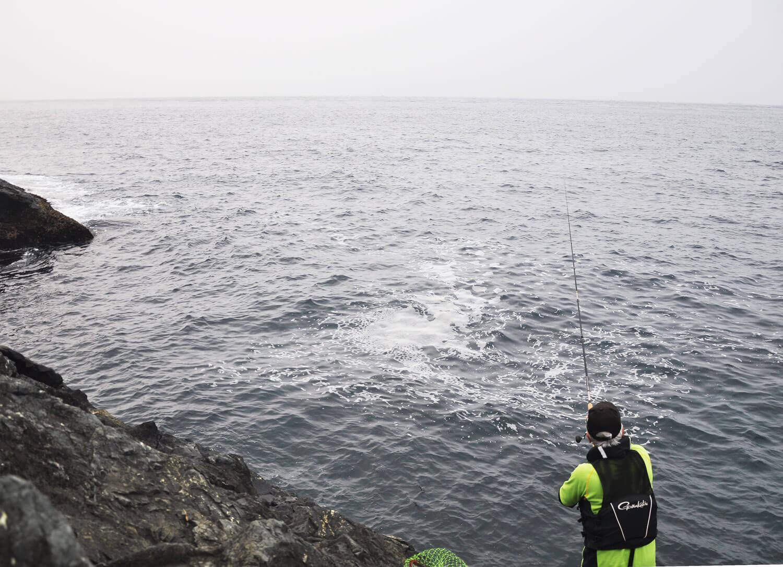 釣りエッセイ・魚資源2