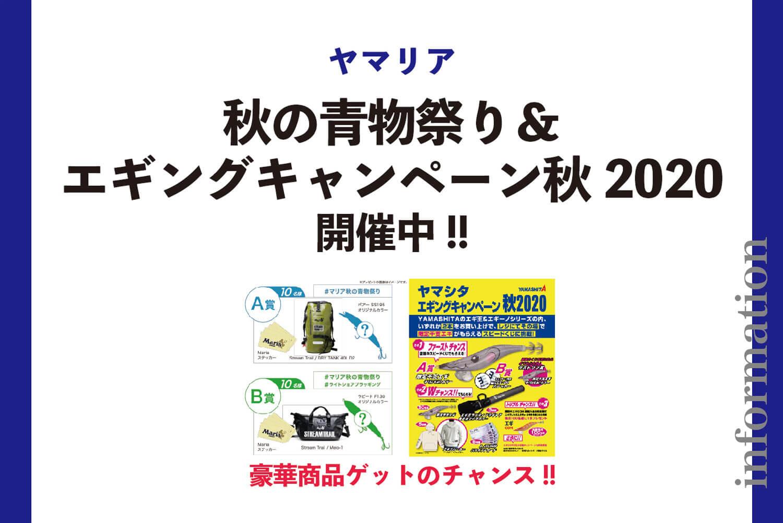 釣りキャンペーン・青物・エギング1